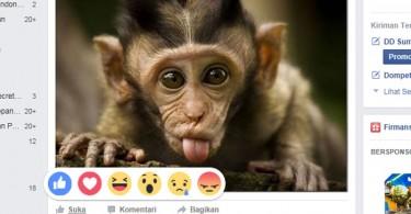Tombol Reactions Facebook