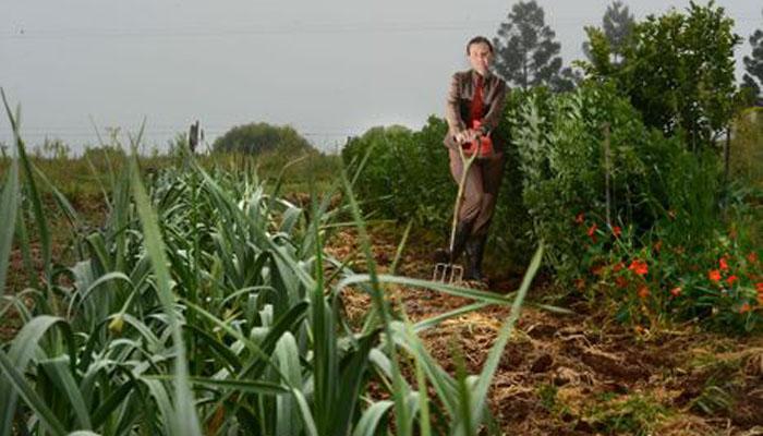 Jo Nemeth Setahun Hidup Tanpa Uang dengan kebun mininya