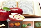 Seminggu Dibacakan Al-Quran, Apel Bisa Jadi Begini, Lantas Bagaimana dengan Badan Kita? Masya Allah!